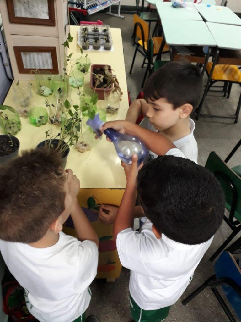 Semeando o futuro: Atividade na aula de Ciências